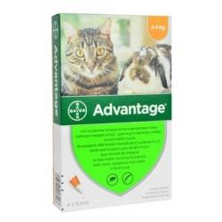 Advantage 40 10% 4x0,4ml...