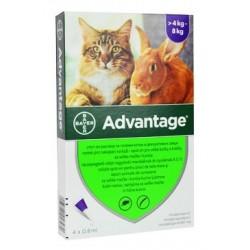 Advantage 80 10% 4x0,8ml...