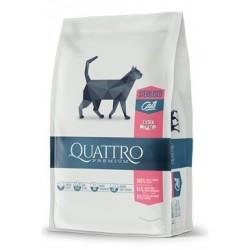 QUATTRO Cat Dry Premium all...